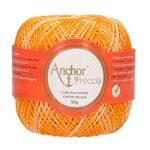 Anchor-Freccia-4787012-Filato-per-Uncinetto-Spessore-12-100-Cotone-Multicolore-Cotone-09429-Multicolor-71cm-x-B01MTX00G3